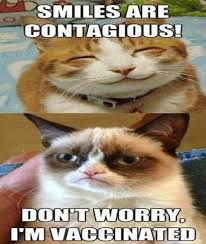 grumpy cat smiling is contagious. Beautiful Contagious Grumpycatsmilesarecontagiousjpg Intended Grumpy Cat Smiling Is Contagious U