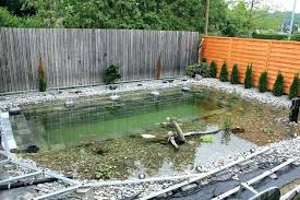 diy natural swimming pool natural swimming pool amazing swim pond all natural patio in progress diy diy natural swimming pool