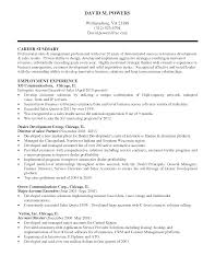 Resume Examples  Summary for Resume Example for Sales Professional     Resume Examples  Summary For Resume Example For Sales Professional With Career Summary In Business Development