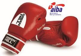 <b>Перчатки боксерские GREEN</b> HILL Super Star AIBA [арт. BGS ...