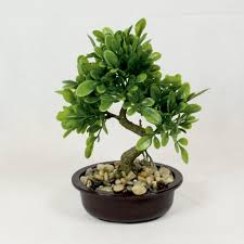 office bonsai tree. Bonsai Tree In Oval Pot, Artificial Plant Decoration For Office And Home 25 Cm D