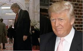 Small Picture WHAT Donald Trump was in Home Alone 2 moviepilotcom