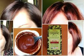 Radico Hair Color Chart Radico 100 Certified Organic Hair Colour