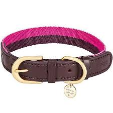 Blueberry Pet Collar Size Chart Blueberry Pet Polyester Genuine Leather Dog Collar Small Ebay