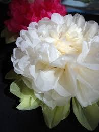 Tissue Paper Flower Decor
