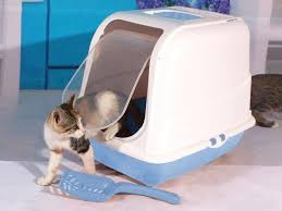 image covered cat litter. Image Covered Cat Litter. Delighful Cat Portable Hooded Toilet Litter  XLarge And Image Covered Litter S
