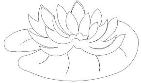 Small Picture Water Lily Pad Coloring Page Color Luna
