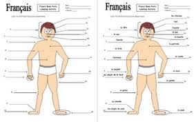 Other parts like your grille, can also be easily damaged in an accident. French Body Parts Diagram To Label With 20 Body Parts Les Parties Du Corps