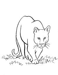 Welcome to the lion coloring pages page! Mountain Lion Coloring Page Art Starts