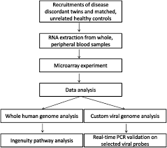 Flow Chart Of The Experimental Design And Data Analyses