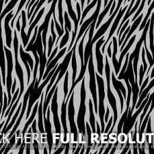 Small Picture Zebra Print Hd Backgrounds Images Art Zebra adult