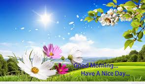 cute beautiful good morning images free 5