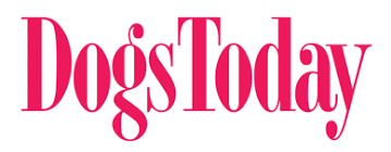 guest essays archives dogs today magazine