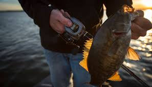 <b>Gear Ratios</b> 101: Breaking Down And Explaining Fishing Reels