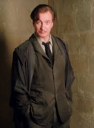 Remus Lupin | Lupin harry potter, Harry potter characters, Harry potter wiki