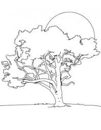the big tree in the night coloring for kids tree coloring pages kidsdrawing free coloring pages
