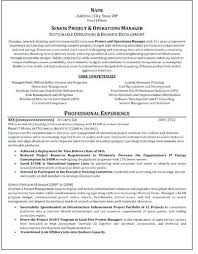Certified Professional Resume Writers Resume Writing Service Best Inspiration Professional Resume Writers Near Me