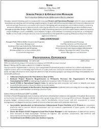 Certified Professional Resume Writers Resume Writing Service Best Gorgeous Certified Professional Resume Writers