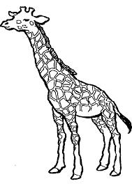 Dessin Imprimer Prefix De Girafe L