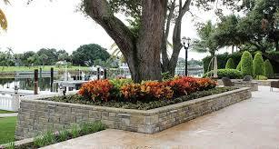 retaining wall and garden around tree