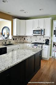 bleached oak cabinets bleached oak kitchen cabinets fresh tips tricks for painting oak cabinets evolution of