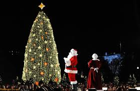 beautiful christmas decorations. Christmas Trees Are A Major Part Of Decorations And Celebrations Without Tree Would Sure Be Incomplete. The Tradition De Beautiful
