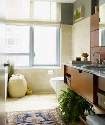 Tan Bathroom Rugs Chic Shaggy Rugs In Living Room Contemporary With Window