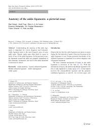 anatomy of the ankle ligaments a pictorial essay pdf  anatomy of the ankle ligaments a pictorial essay pdf available