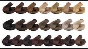 Difiaba Color Chart Know About Medium Ash Brown Hair Color Chart Youtube
