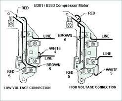 Century Motors Wiring Diagram Diagram Of Digestive System Man Wiring Volt Motor Animal