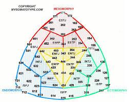 Mbti 16 Types Chart Somatotype Chart Of Meyers Briggs Personality Types