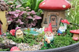 how to plant a fairy garden