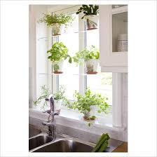 Small Picture Herb garden design indoor
