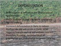 deforestation and afforestation essay high school essay examples deforestation and afforestation essay