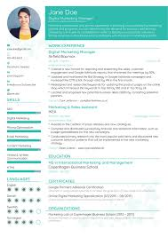 Resume Templates Best 007 Templates Professionals Best Resume