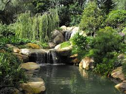 Backyard Ponds Handmade Ponds With Waterfalls For Homes This Pond With