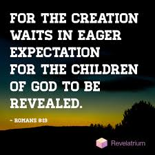 Image result for image of Romans 8:19