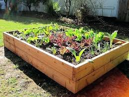 how to build a vegetable garden box. How To Build A Veggie Garden Awesome Raised Vegetable Boxes . Box U