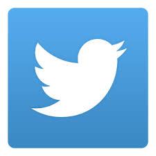 Image result for google images twitter