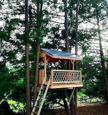 Small tree house blueprints Pallet Small Tree House Ideas Tree House Designs For Kids Kids Tree House Plans Designs Free Inspirational And Picture Floor Tree House Anilltdcom Small Tree House Ideas Tree House Designs For Kids Kids Tree House