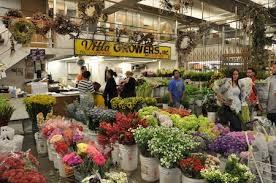 la flower mart villa growers