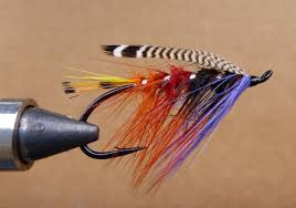 Salmon Fly Patterns Classy TheDrake FrankenFly