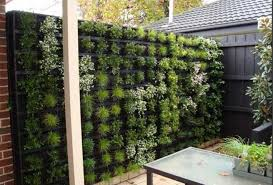 Or, if you prefer, you can completely obscure part of your fence by  transforming it into a grid that houses ivy and succulents. This vertical  garden is a ...