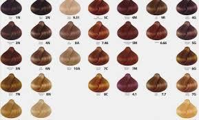 Loreal Richesse Color Chart Dia Richesse Shade Chart Www Bedowntowndaytona Com