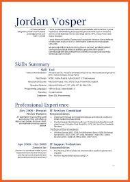 Professional It Resume Investment Executive Sample Resume Customer