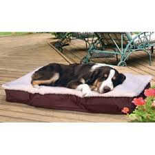 Outdoor Dog Bed With Canopy | Wayfair