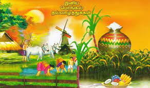 Happy Pongal Festival Tamil Wishes ...