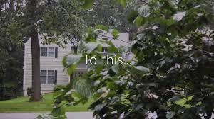 Next Level Landscaping Home Design Let Next Level Lawn And Landscape Transform Your Lawn