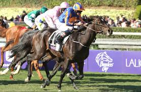 2014 Breeders Cup Charts 2014 Breeders Cup Turf Misconceptions