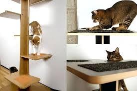 modern pet furniture. square cat habitat baobab modern tree pet furniture nz hepper f